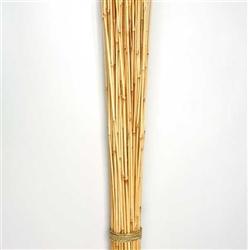 Honey bamboo sticks for Big vase with bamboo sticks