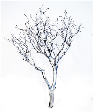 Silver Metallic Manzanita Branches 18 Quot 24 Quot Blooms Amp Branches