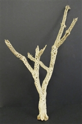 Cholla Wood Sandblasted Cholla Branch 24 Quot 30 Quot